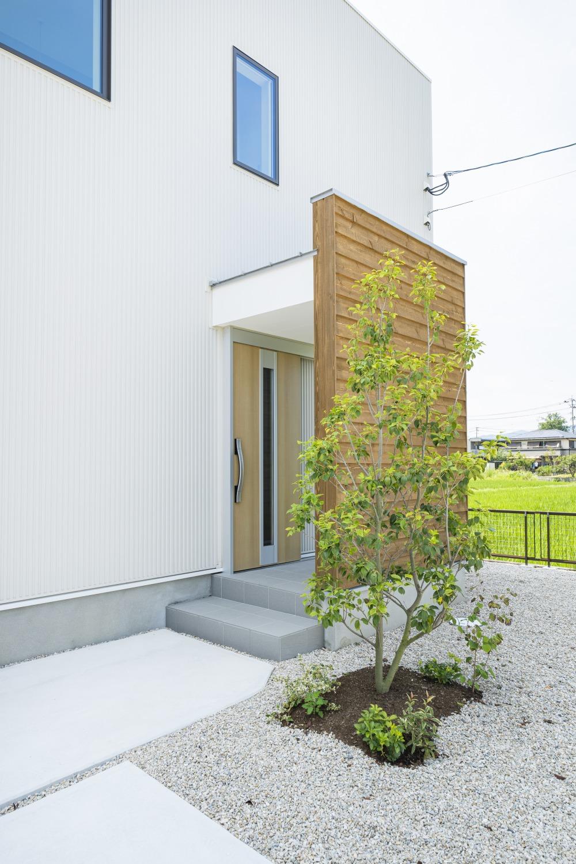 ホワイトの外観に木がアクセントのナチュラルな四角いお家、注文住宅Simple Box03